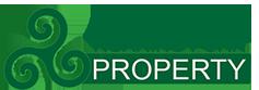 Roaring Fork Property